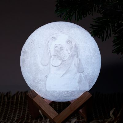 Remote Control 16 Colors-Photo Moon Lamp,Custom 3D Photo Light(10cm-20cm)
