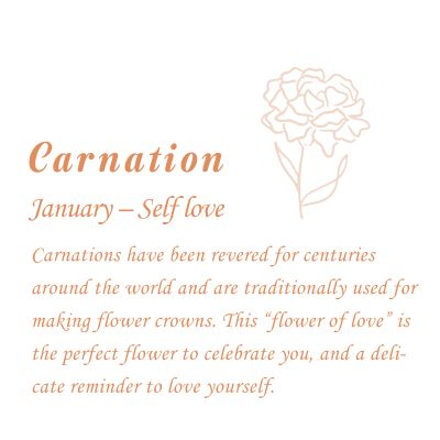 Carnation-January Birth Flower Disc Necklace With Birthstone
